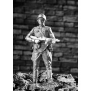 Боец - конвоир РККА 1943-1945 гг 137 РТ (н/к)