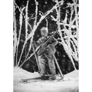Рядовой на лыжах, 1942 294 РТ (н/к)