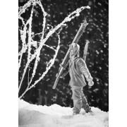 Лыжник РККА парад 1941 года 296 РТ