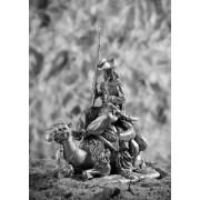Рядовой полка дромадеров с верблюдом 1801 год  415 РТ (н/к)