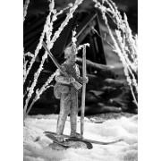 Датский лыжник-егерь, 1808 год 551 РТ (н/к)